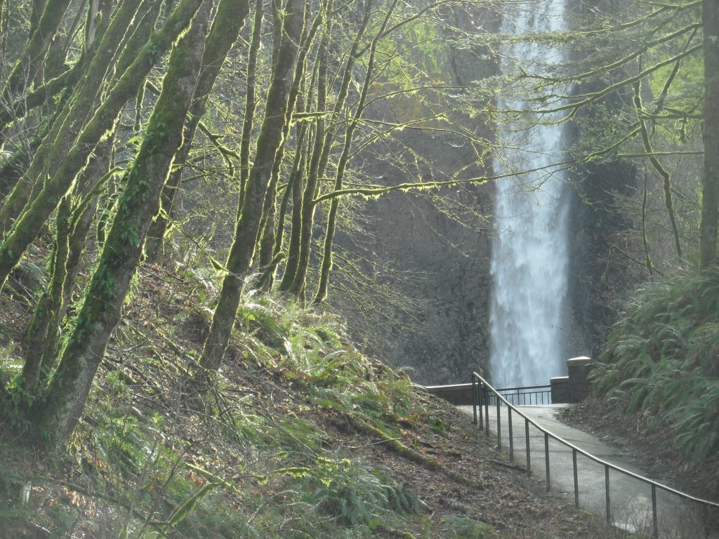 COOL CLEAN WATER ON THE COLUMBIA GORGE