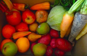 ORGANIC FOOD DELIVERY: INGREDIENTS FOR LIFE